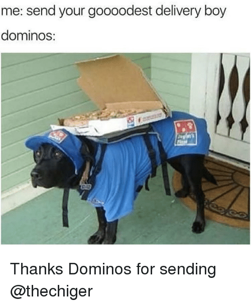 Memes, Domino's, and Boy: me: send your goooodest delivery boy  dominos: Thanks Dominos for sending @thechiger