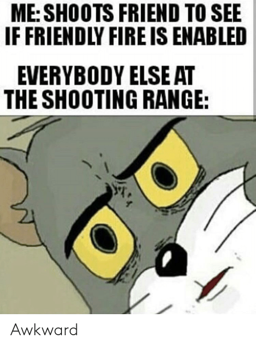 Fire, Funny, and Awkward: ME: SHOOTS FRIEND TO SEE  IF FRIENDLY FIRE IS ENABLED  EVERYBODY ELSEAT  THE SHOOTING RANGE: Awkward