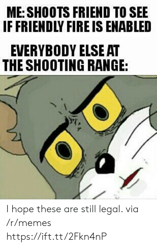 Fire, Memes, and Hope: ME: SHOOTS FRIEND TO SEE  IF FRIENDLY FIRE IS ENABLED  EVERYBODY ELSE AT  THE SHOOTING RANGE: I hope these are still legal. via /r/memes https://ift.tt/2Fkn4nP