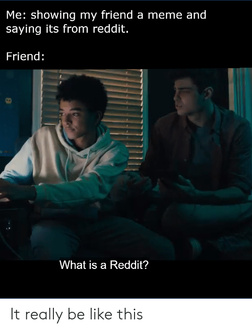 Me Showing My Friend a Meme and Saying Its From Reddit Friend What