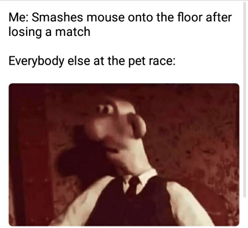 Me Smashes Mouse Onto the Floor After Losing a Match