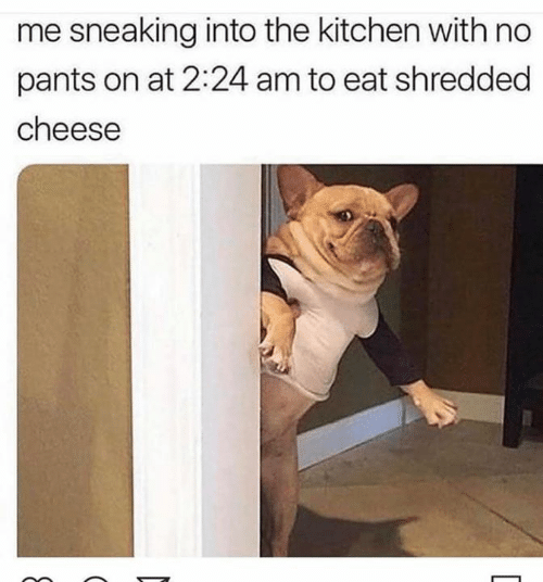 Dank, 🤖, and Cheese: me sneaking into the kitchen with no  pants on at 2:24 am to eat shredded  cheese