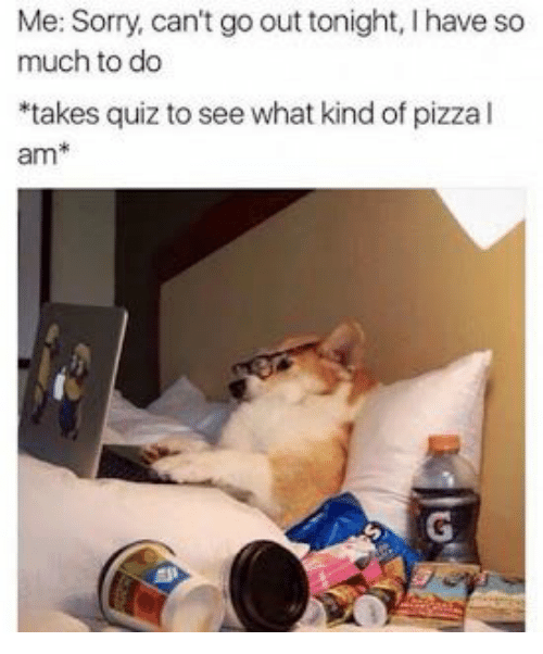 Pizza, Sorry, and Quiz: Me: Sorry, can't go out tonight, I have so  much to do  *takes quiz to see what kind of pizza l  am*  G