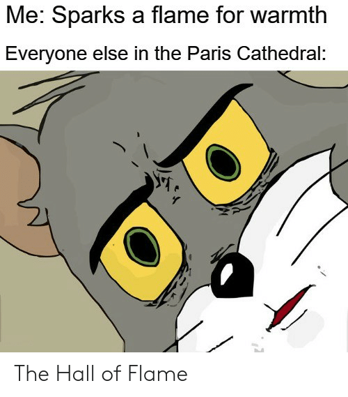 Reddit, Paris, and Sparks: Me: Sparks a flame for warmth  Everyone else in the Paris Cathedral: The Hall of Flame