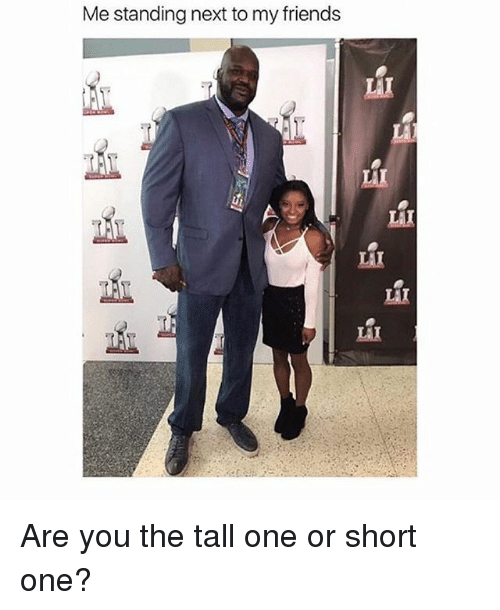 Friends, Memes, and 🤖: Me standing next to my friends  LA  LAI  LAI  LAI  LiI  LAX Are you the tall one or short one?