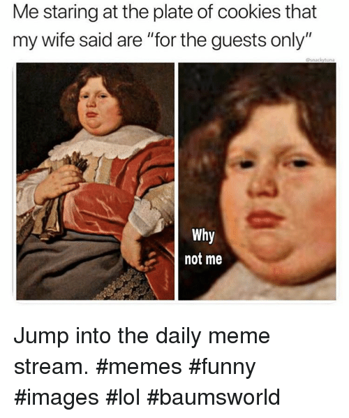 """Cookies, Funny, and Lol: Me staring at the plate of cookies that  my wife said are """"for the guests only""""  @snackytuna  Why  not me Jump into the daily meme stream. #memes #funny #images #lol #baumsworld"""