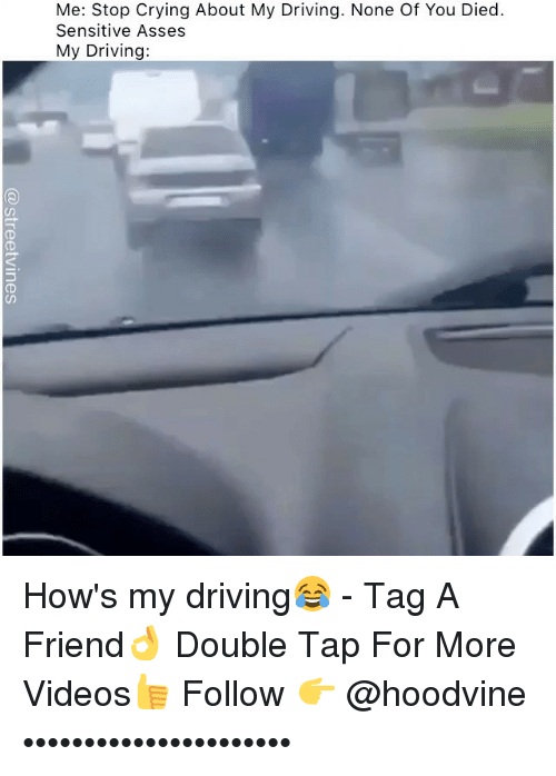 Crying, Driving, and Memes: Me: Stop Crying About My Driving. None Of You Died  Sensitive Asses  My Driving:  (D How's my driving😂 - Tag A Friend👌 Double Tap For More Videos👍 Follow 👉 @hoodvine ••••••••••••••••••••••