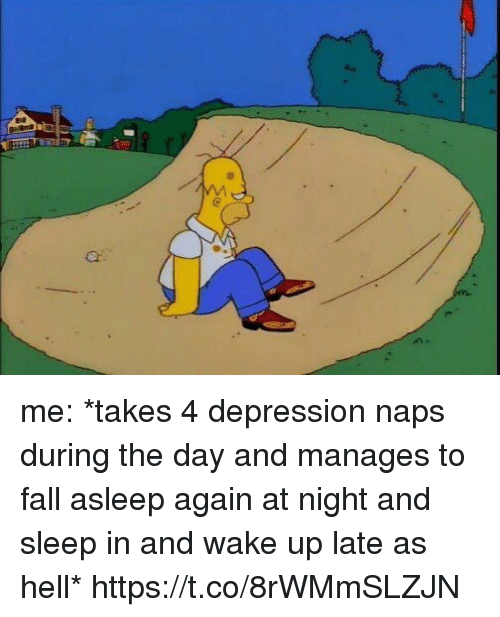 Fall, Depression, and Girl Memes: me: *takes 4 depression naps during the day and manages to fall asleep again at night and sleep in and wake up late as hell* https://t.co/8rWMmSLZJN
