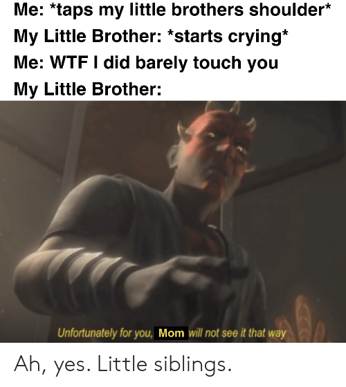 Crying, Wtf, and Little Brother: Me: *taps my little brothers shoulder*  My Little Brother: *starts crying*  Me: WTF I did barely touch you  My Little Brother:  Unfortunately for you, Mom will not see it that way Ah, yes. Little siblings.