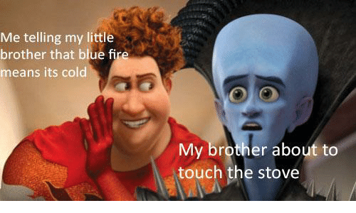 Fire, Blue, and Cold: Me telling my little  brother that blue fire  means its cold  My brother about to  touch the stove