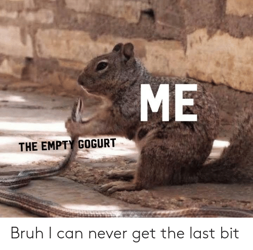 Bruh, Dank Memes, and Never: ME  THE EMPTY GOGURT Bruh I can never get the last bit