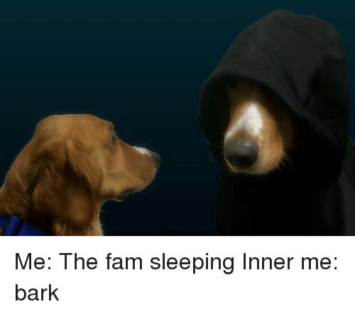 Fam, Girl Memes, and  Barking: Me: The fam sleeping Inner me: bark