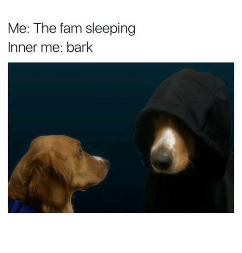 Fam, Memes, and 🤖: Me: The fam sleeping  Inner me: bark