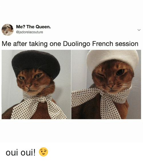 Queen, Relatable, and French: Me? The Queen.  @jadorelacouture  Me after taking one Duolingo French session oui oui! 😉