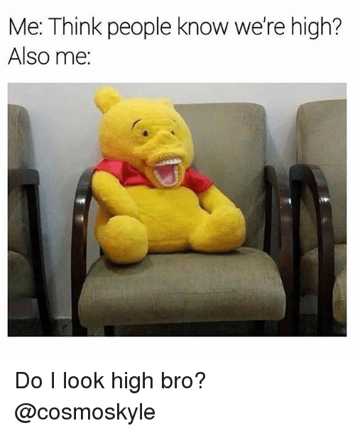 Weed, Marijuana, and Looking: Me: Think people know we're high?  Also me: Do I look high bro? @cosmoskyle