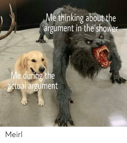 MeIRL, Argument, and Thinking: Me thinking aboutthe  argument in the showe  8  e during the  ctual argumert  Me  2  2 Meirl