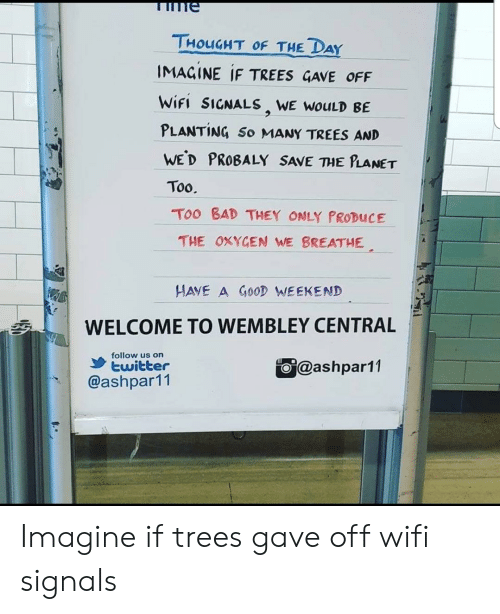 Bad, Twitter, and Trees: me  THOUGHT OF THE DAY  IMACINE IF TREES GAVE OFF  WİFI SIGNALS, WE wouLD BE  PLANTING So MANY TREES AND  WED PROBALY SAVE THE PLANET  Too.  Too BAD THEY ONLY PRODUCE  THE OXYCEN WE BREATHE  HAVE A GO0D WEEKEND  WELCOME TO WEMBLEY CENTRAL  follow us on  ashpar11  twitter  @ashpar11 Imagine if trees gave off wifi signals