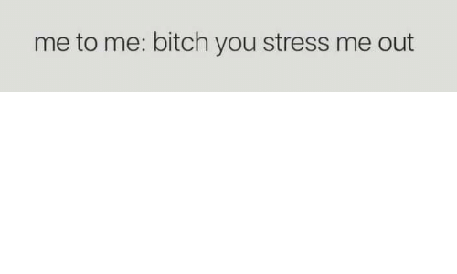 Bitch, Stress, and You: me to me: bitch you stress me out