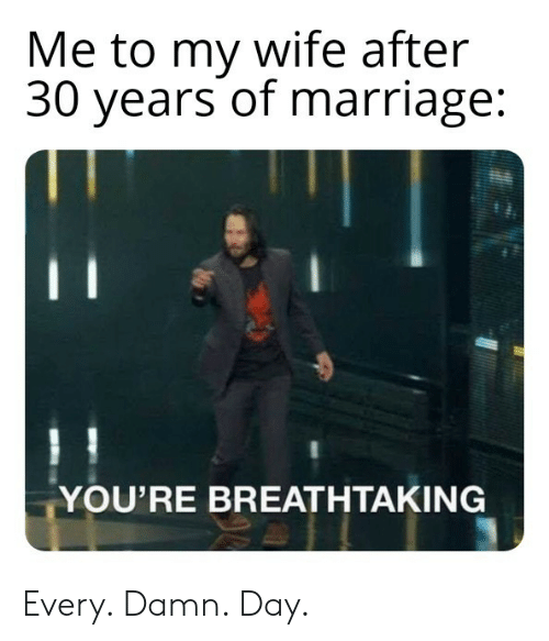 Marriage, Wife, and Day: Me to my wife after  30 years of marriage:  YOU'RE BREATHTAKING Every. Damn. Day.