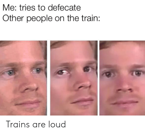 Train, Dank Memes, and Trains: Me: tries to defecate  Other people on the train: Trains are loud