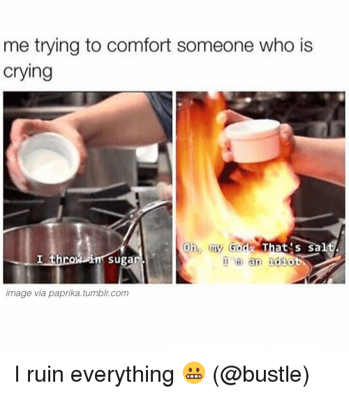 Memes, 🤖, and Comforter: me trying to comfort someone who is  Crying  oh, my God  That s S  I throw Sugar.  m an idiot  image via paprika tumblr com I ruin everything 😬 (@bustle)