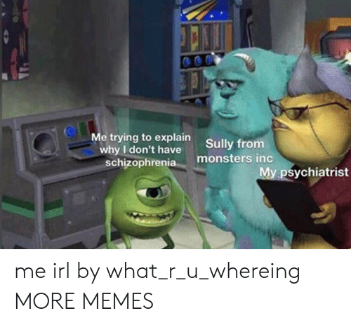 Dank, Memes, and Monsters Inc: Me trying to explain  why I don't have  schizophrenia  Sully from  monsters inc  My psychiatrist me irl by what_r_u_whereing MORE MEMES