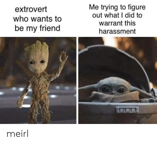 MeIRL, Who, and Warrant: Me trying to figure  out what I did to  warrant this  extrovert  who wants to  be my friend  harassment meirl