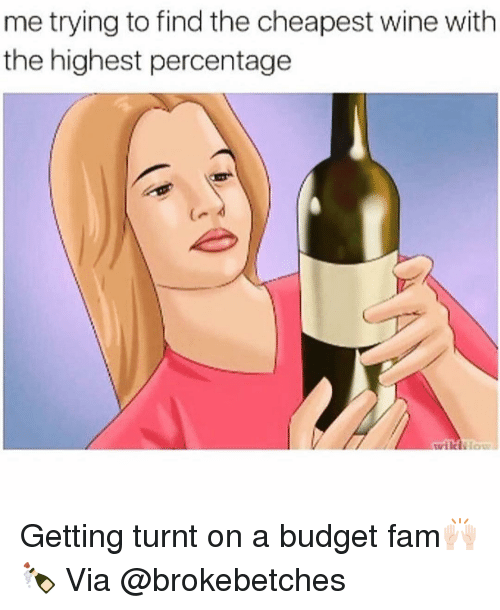 Fam, Funny, and Getting Turnt: me trying to find the cheapest wine with  the highest percentage Getting turnt on a budget fam🙌🏻🍾 Via @brokebetches