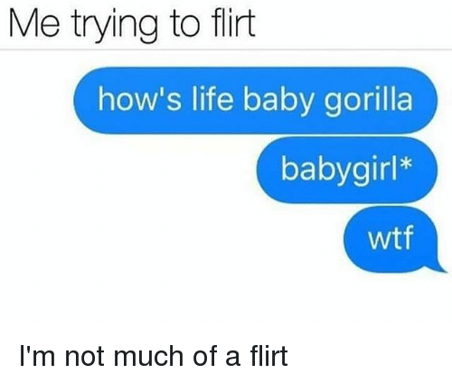 Life, Memes, and Wtf: Me trying to flirt  how's life baby gorilla  babygirl*  wtf I'm not much of a flirt