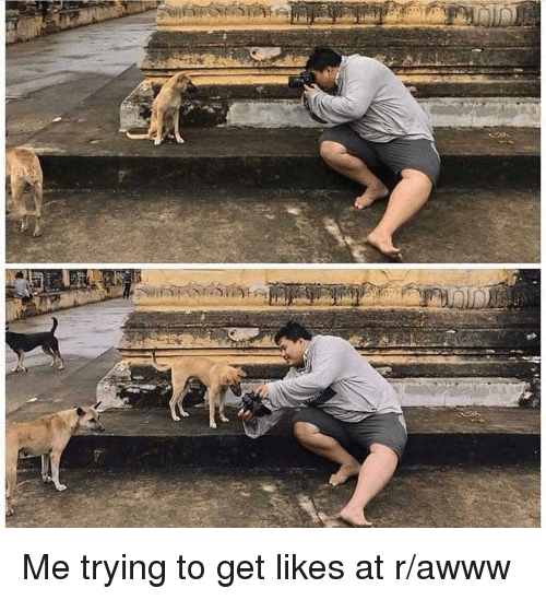 Awww, Get, and Likes