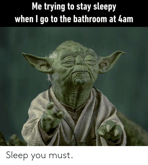 Sleep, You, and Stay: Me trying to stay sleepy  when I go to the bathroom at 4am Sleep you must.