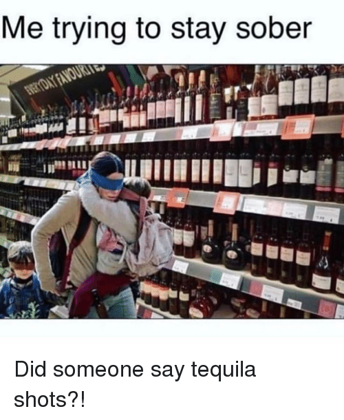 Tequila, Sober, and Girl Memes: Me trying to stay sober Did someone say tequila shots?!