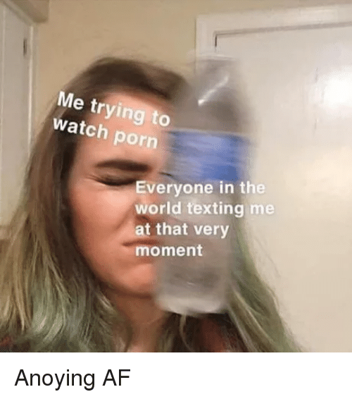 Af, Reddit, and Texting: Me trying to  watch porn  Everyone in the  world texting me  at that very  moment