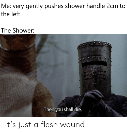 Shower, You, and Handle: Me: very gently pushes shower handle 2cm to  the left  The Shower:  Then you shall die. It's just a flesh wound
