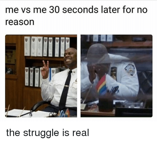 Memes, Struggle, and The Struggle Is Real: me vs me 30 seconds later for no  reason the struggle is real