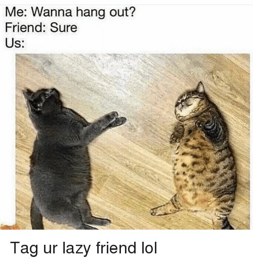Funny, Lazy, and Lol: Me: Wanna hang out?  Friend: Sure  Us: Tag ur lazy friend lol