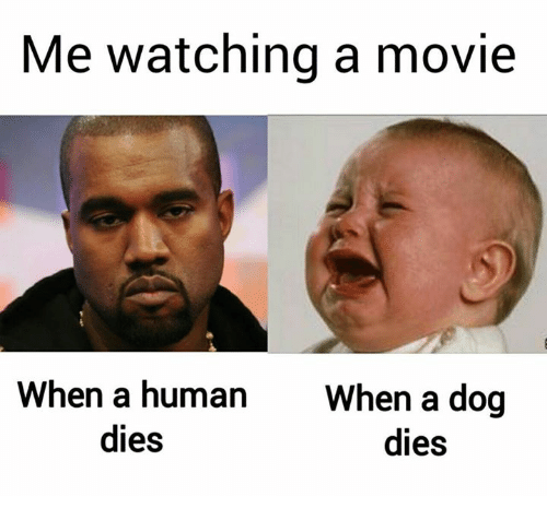 me-watching-a-movie-when-a-human-when-a-
