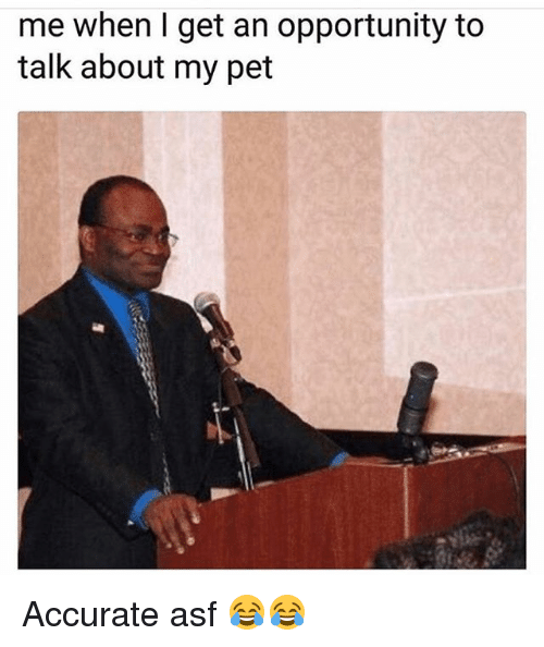 Funny, Opportunity, and Pet: me when I get an opportunity to  talk about my pet Accurate asf 😂😂