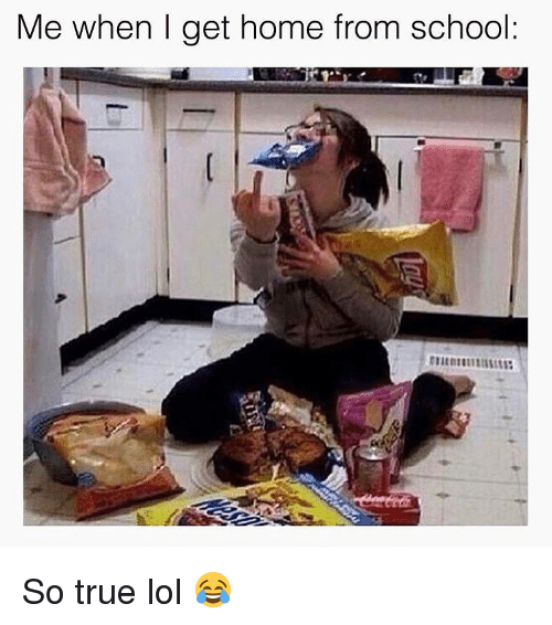 me when i get home from school so true lol 14647388 ✅ 25 best memes about me when i get home from school me when i,Get Home Meme