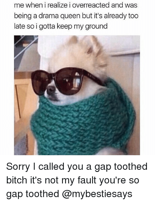 Bitch, Sorry, and Queen: me when i realize i overreacted and was  being a drama queen but it's already too  late so i gotta keep my ground Sorry I called you a gap toothed bitch it's not my fault you're so gap toothed @mybestiesays