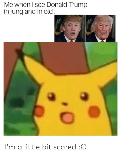 Donald Trump, Reddit, and Trump: Me when I see Donald Trump  in jung and in old I'm a little bit scared :O
