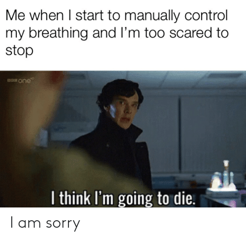 Me When I Start To Manually Control My Breathing And L M Too Scared To Stop I Think I M Going To Die I Am Sorry Sorry Meme On Me Me