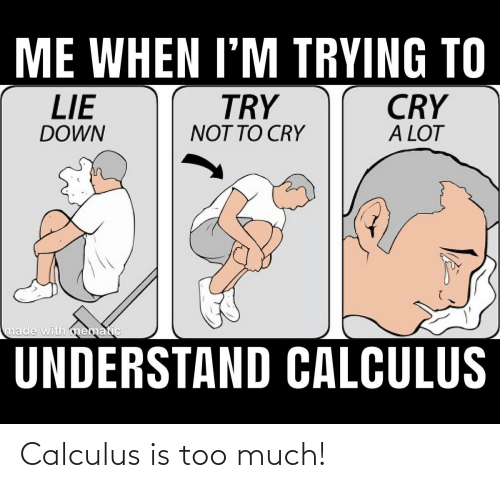 Too Much, Calculus, and Down: ME WHEN I'M TRYING TO  CRY  A LOT  TRY  NOT TO CRY  LIE  DOWN  made with mematic  UNDERSTAND CALCULUS Calculus is too much!