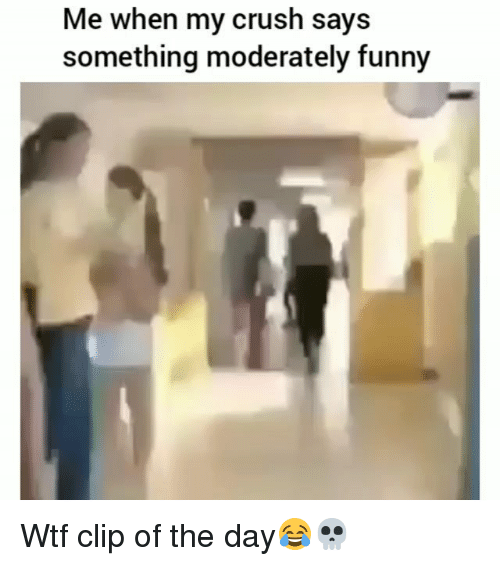 Crush, Funny, and Wtf: Me when my crush says  something moderately funny Wtf clip of the day😂💀