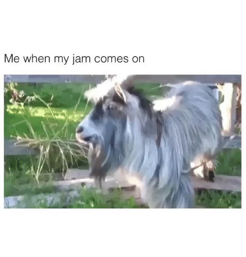 Funny, Jam, and  Jamming: Me when my jam comes on