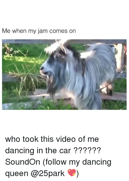 Dancing, Queen, and Video: Me when my jam comes on who took this video of me dancing in the car ?????? SoundOn (follow my dancing queen @25park 💖)