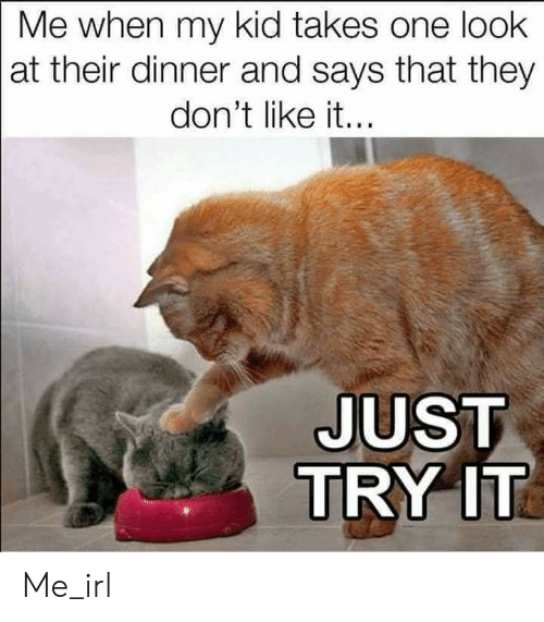 Irl, Me IRL, and One: Me when my kid takes one look  at their dinner and says that they  don't like it...  JUST  TRY IT Me_irl
