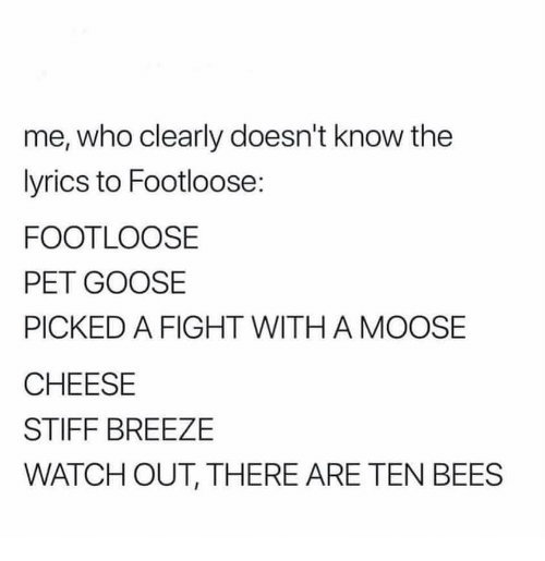 Me Who Clearly Doesn't Know the Lyrics to Footloose FOOTLOOSE PET
