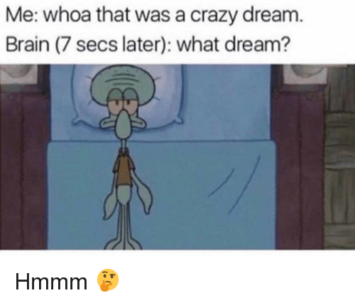 Crazy, Funny, and Brain: Me: whoa that was a crazy dream.  Brain (7 secs later): what dream? Hmmm 🤔