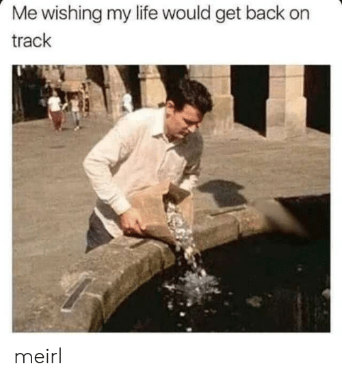 Life, MeIRL, and Back: Me wishing my life would get back on  track meirl